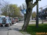 200405_majowka_053
