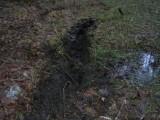 200501_koscierzyna_jeep012